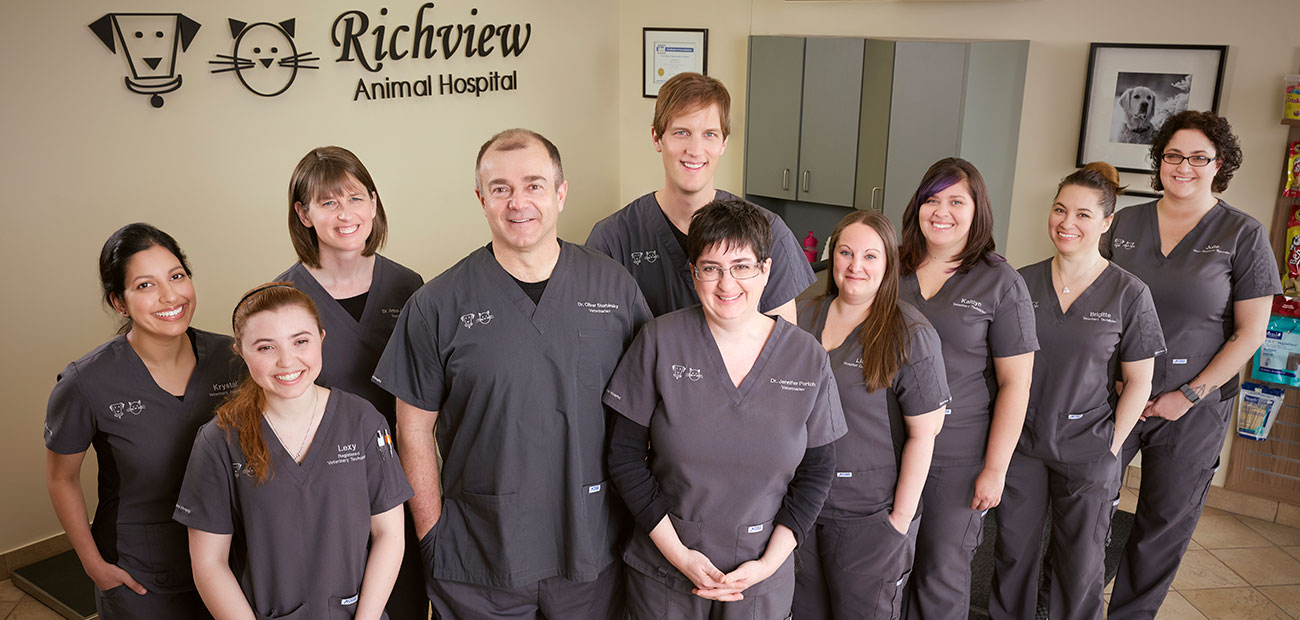 Richview Animal Hospital staff